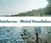 Michel Houellebecq : Plateforme – critique