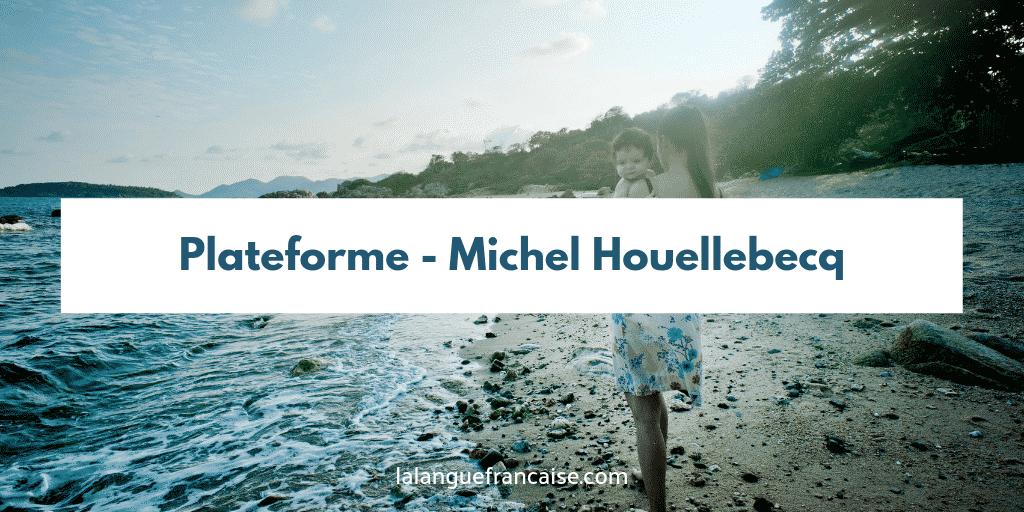 Michel Houellebecq : Plateforme - critique