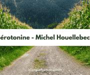 Michel Houellebecq : Sérotonine – critique