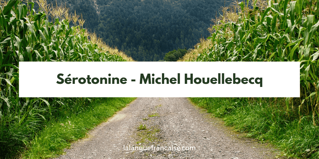 Michel Houellebecq : Sérotonine - critique
