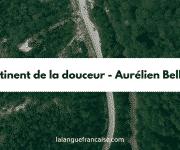 Aurélien Bellanger : Le continent de la douceur – critique