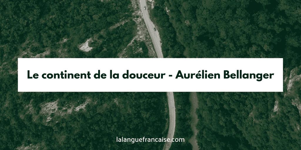 Aurélien Bellanger : Le continent de la douceur - critique