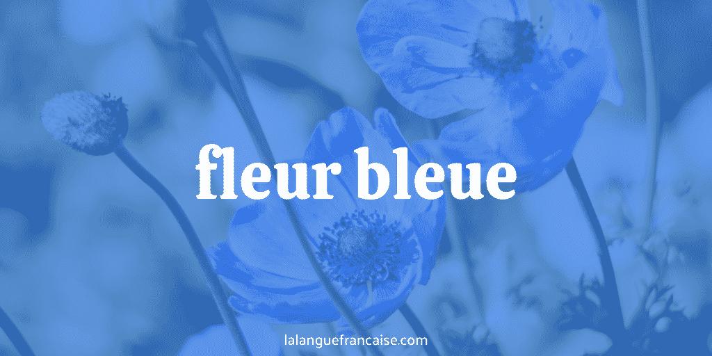 Fleur bleue : définition et origine de l'expression