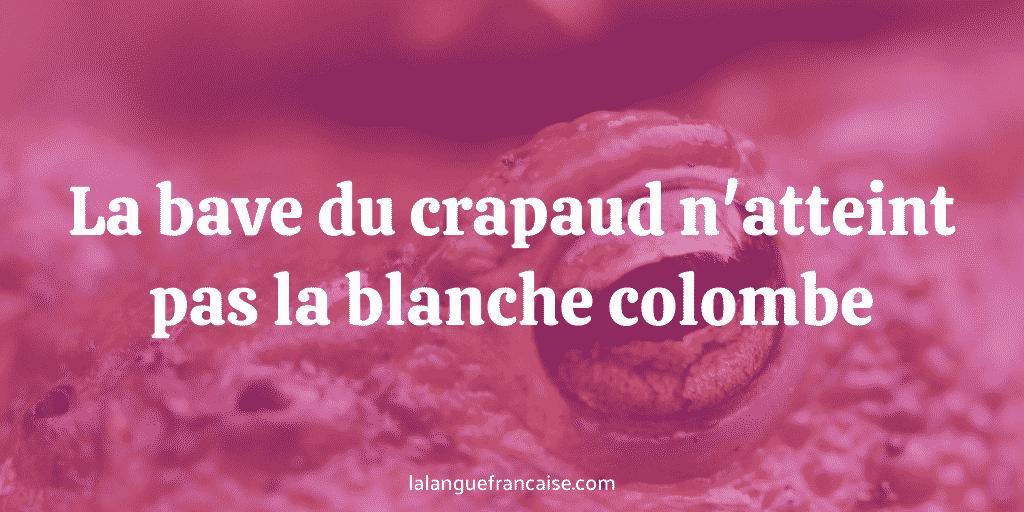 La bave du crapaud n'atteint pas la blanche colombe : définition et origine de l'expression