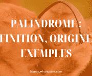 Palindrome : définition, origine et exemples