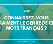Quiz : connaissez-vous vraiment le genre de ces mots français ?